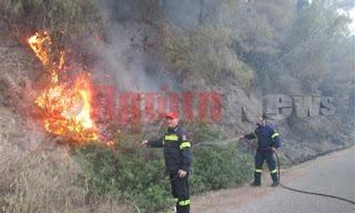 Ηλεία Φωτιές από τα μέσα Μάρτη