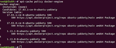 Verify Docker Repo