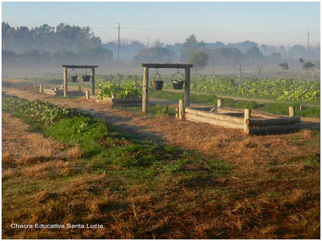 Neblina en la huerta - Chacra Educativa Santa Lucía