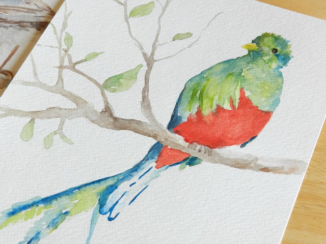 Watercolor bird on branch