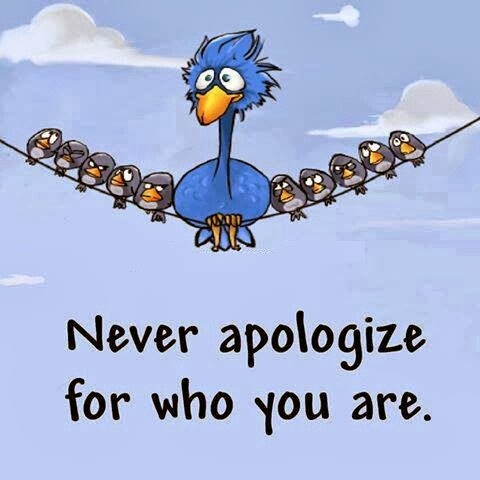 Funny fat bird on telephone wire meme cartoon picture - never apologize for who you are