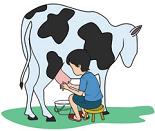 Revisi Untuk Berlatih Penilaian Harian  Soal Tematik Kelas 4 Tema 4 Subtema 2 Semester 1 Revisi