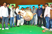 Natukodi Audio Launch Stills-thumbnail-8