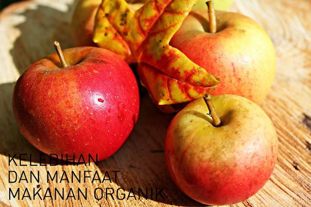 kelebihan makanan organik