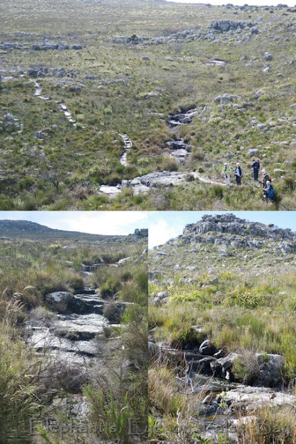 Waterfall at Silvermine