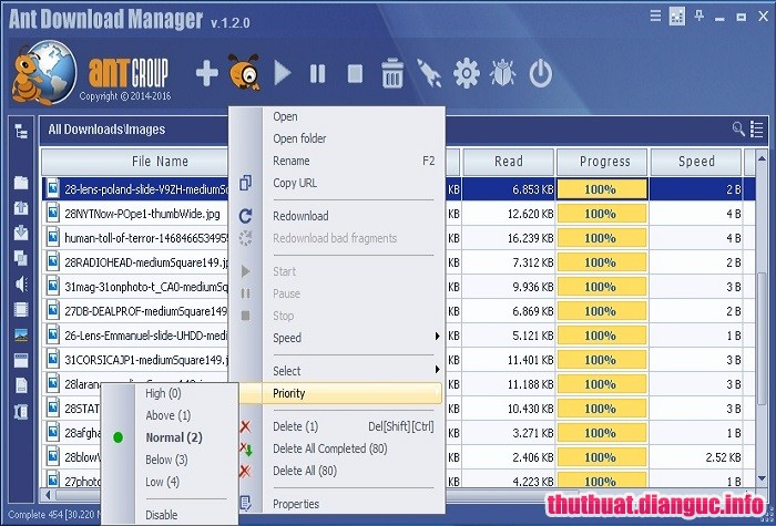 Download Ant Download Manager Pro 1.10.2 Full Cr@ck