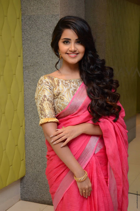 Anupama Parameswaran at Vunnadi Okate Zindagi Movie Thanks Meet