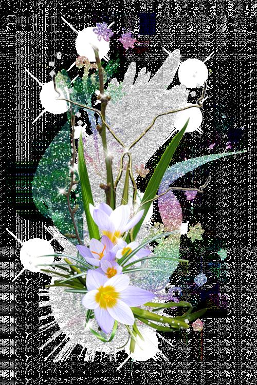 [Resim: PNG-Guel-Cicek-Resimleri-Part7-N%2B%2865%29.png]