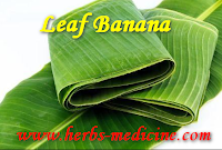 Banana Leaves for herbal beauty