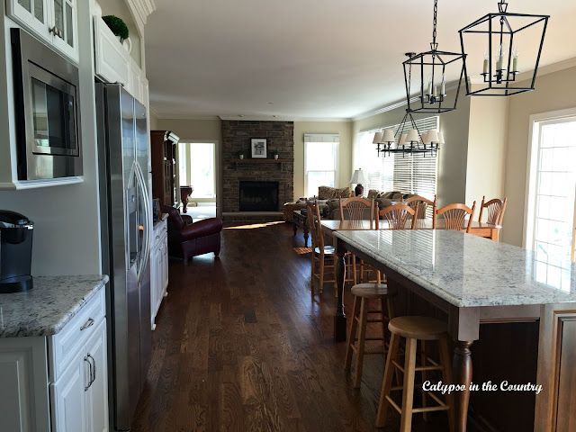 Kitchen Island and view to family room