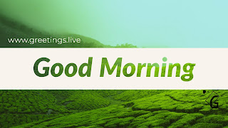 Good Morning wishes in green colour HAD image