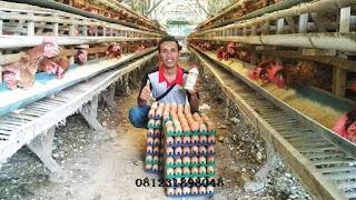 Agen Nasa Kecamatan Bakung Blitar 081231898048