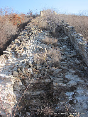 2do día - Jiankou - Gran Muralla China