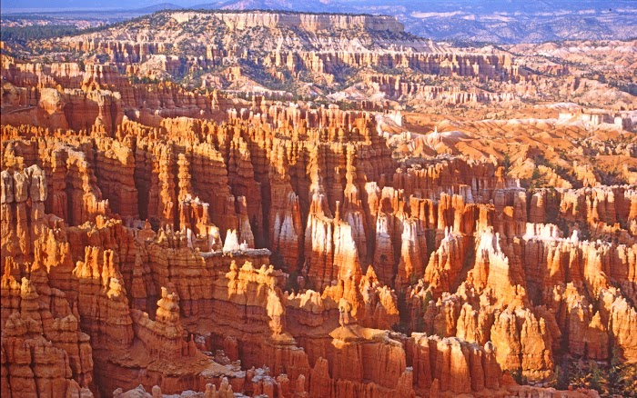 Amazing rock pillars in Bryce Canyon National Park