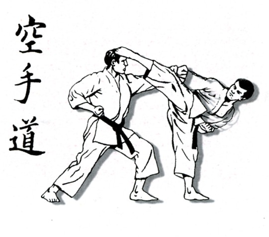 Shotokan Karate Do Dibujo Daily Motivational Quotes