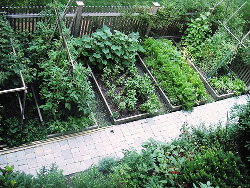 Home Decorations: Perfect Backyard Vegetable Garden Design ... on Backyard Patio Layout id=91456