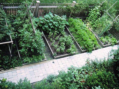 Perfect Backyard Vegetable Garden Design Plans Ideas  Backyard Vegetable Garden Design Pictures