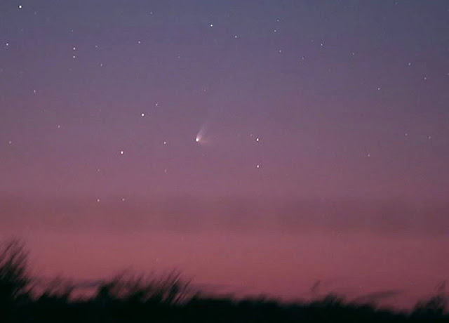 Cometa Panstarrs em julho de 2015