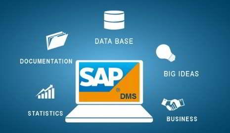 Qué es SAP DMS - Consultoria-SAP