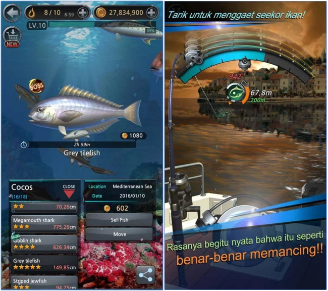 Download fishing hook v 1 2 5 apk mod android indo net for Fishing hook game