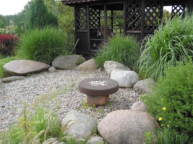 ogród traw, trawy w ogrodzie