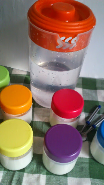 yogurt-casero