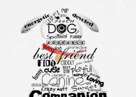 Words to Describe our Dogs Sympathy Card