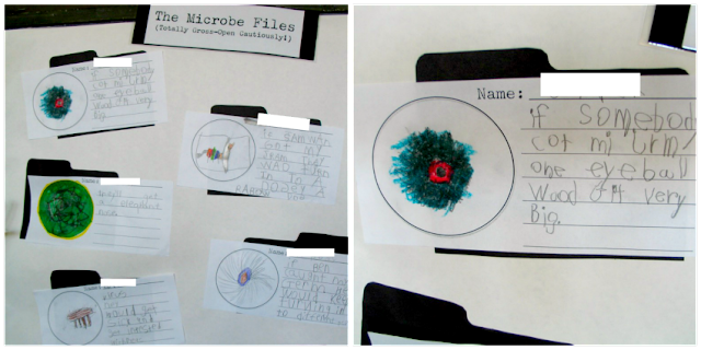 Microbe Inquiry First Grade
