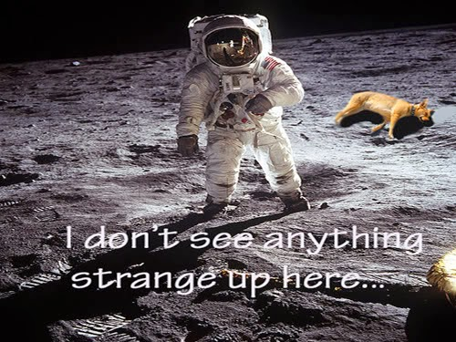 Funny Space Pictures | Space Wallpaper