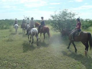 Riitta reissaa, Botswana, ratsastusmatkailu, ratsastusmatka, horsexplore