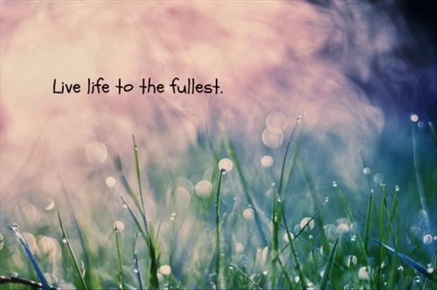 Love Quotes About Life: Live Life Quotes- Living Life To The Full