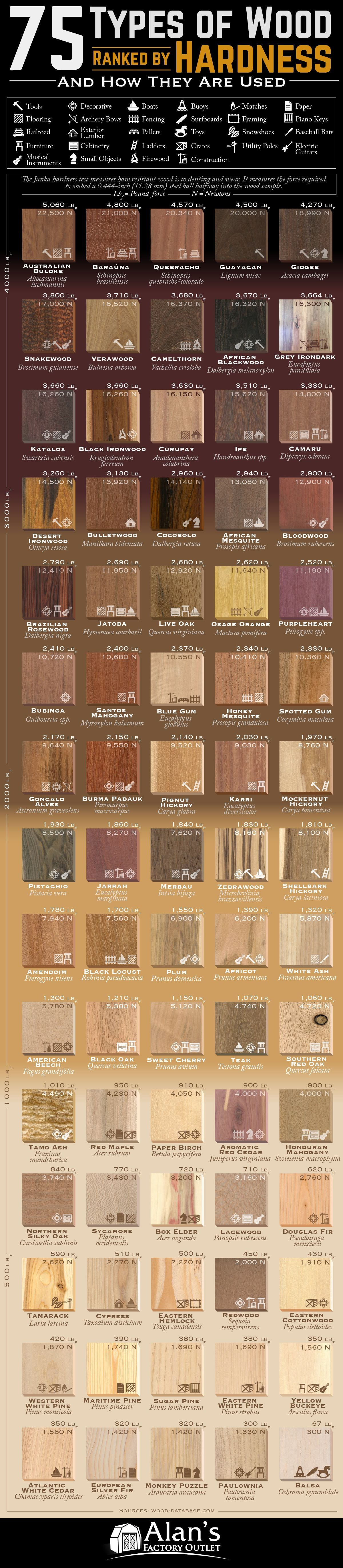 75 Types of Wood Ranked by Janka Hardness and How They Are Used #infographic
