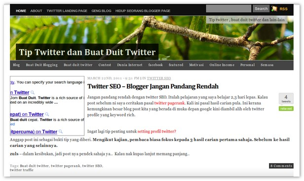 tips twitter dan buat duit twitter