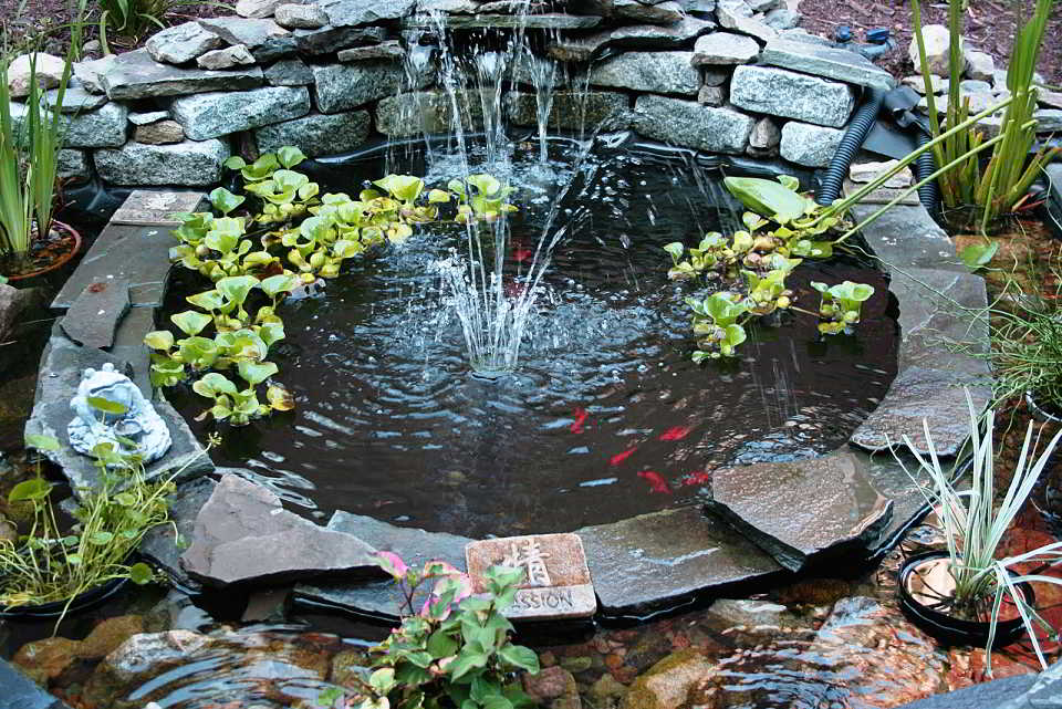 Desain Kolam Ikan Minimalis Sederhana