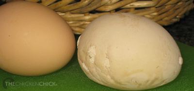 Flat egg.