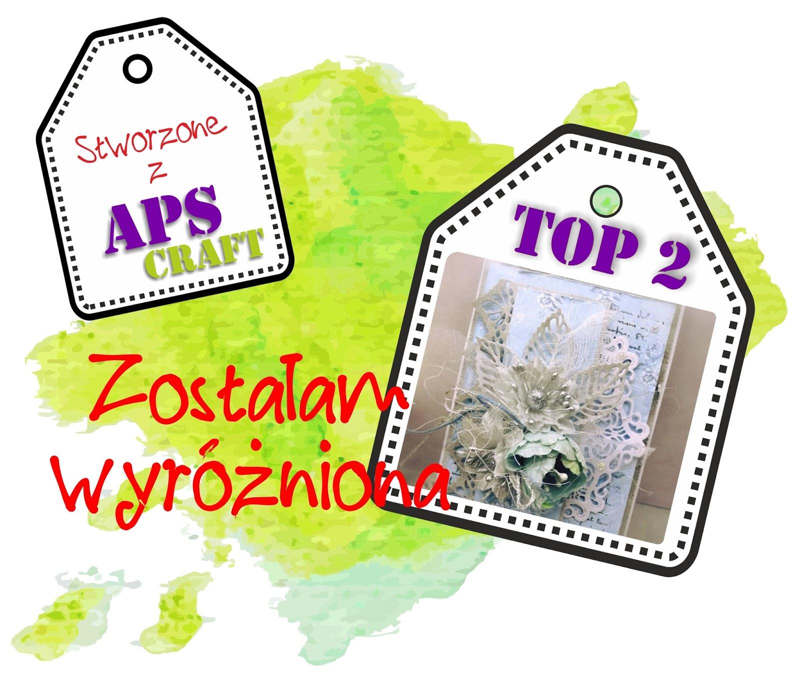 TOP 2 w APS