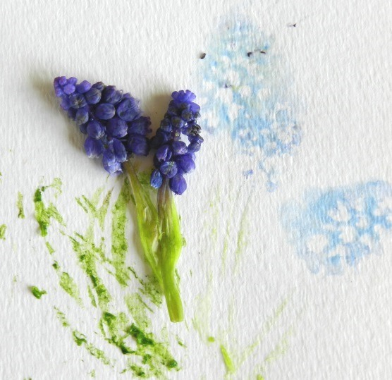 Make flower prints by smashing flowers onto paper: Grow Creative Blog