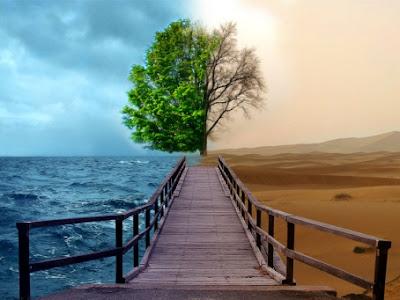 Cerita inspirasi:Hidup ini Berkat atau Kutukan