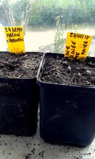 étiquettes de jardinage à faire soi-même.
