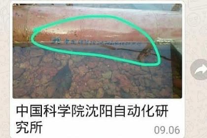 Temuan Drone China di Bintan Bisa Jadi Isu Sensitif