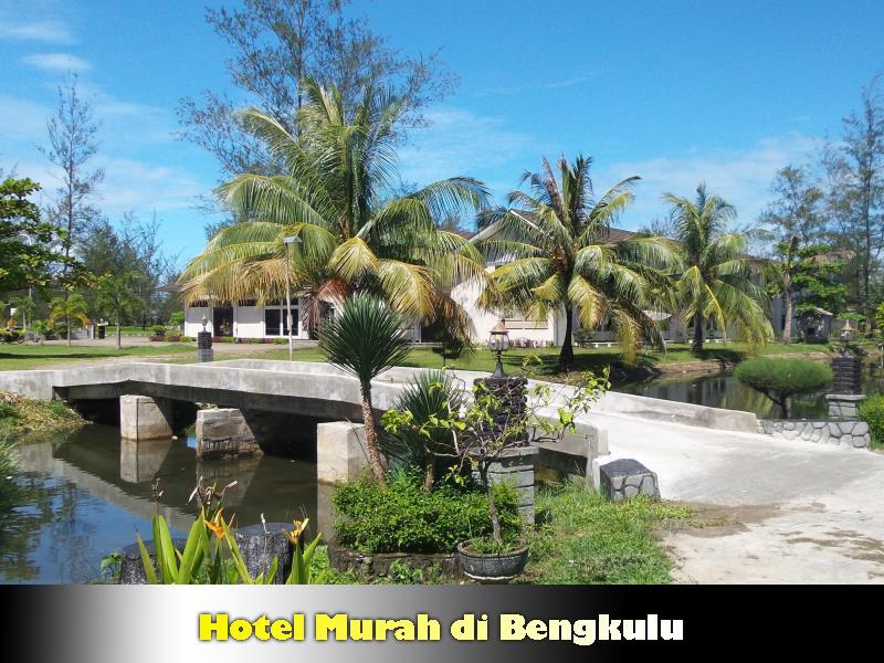 Info Tarif Hotel Murah di Bengkulu
