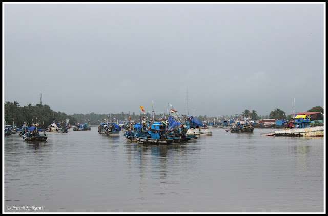 Sal River, South Goa