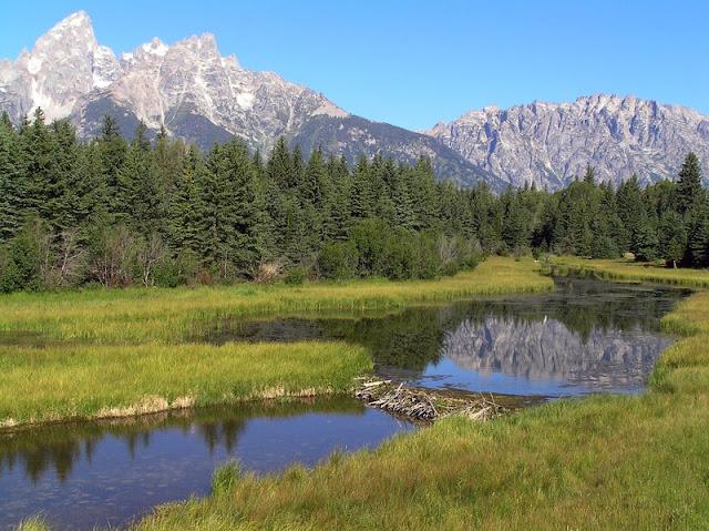 a lake at Grand Teton National Park