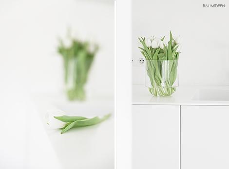 Tulpensaison 2018 - schlichte Tulpen in der Glasvase