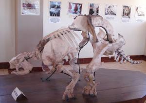 Museo de Sitio Pikillacta