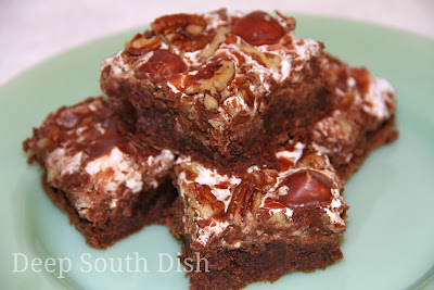 Deep South Dish Mississippi Mud Cake