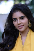 Kalyani PriyaDarshin at RanaRangamPressmeet-thumbnail-3