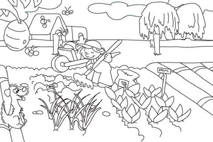 desenhos de horta plantaÇÃo para colorir pintar imprimir ou