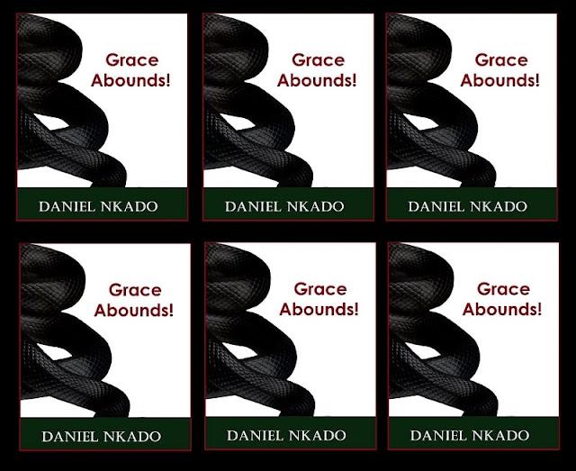 Daniel Nkado's Books