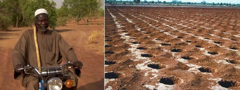 Yacouba-Sawadogo planted trees to stop the spread of the desert